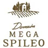 mega-spileo-logo