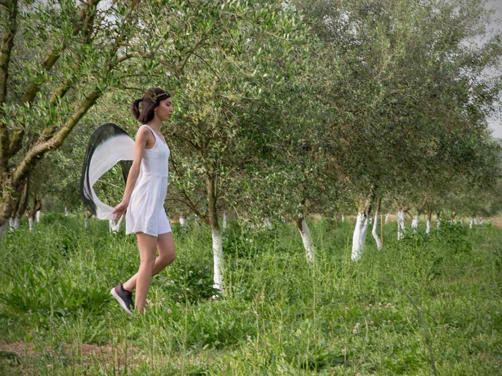 Etolea-olive-oil-storie-3
