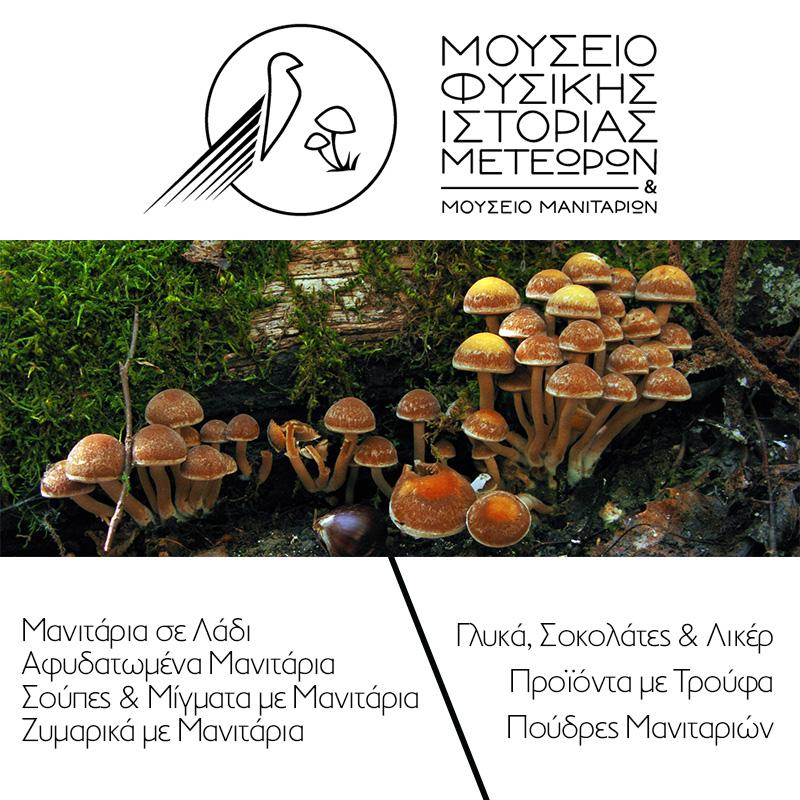 Μουσείο-Φυσικής-Ιστορίας-Μανιταριών-Μετεώρων-Νομή-Natural-History-Museum-Of-Meteora-Mushrooms-Nomee-Foods
