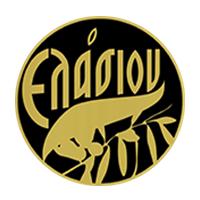 logo-Elasion
