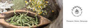 μπαχαρικά-βότανα-βατόμουρα-κορφές-νομή-herbs-spices-blackberries-corphes-nomee-foods-4