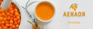 ιπποφαές-αέναον-νομή-hippophae-aenaon-nomee-foods