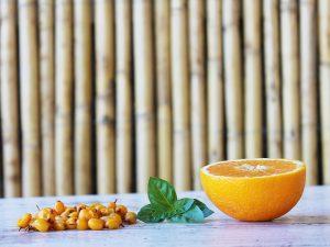 ιπποφαές-αέναον-νομή-hippophae-aenaon-nomee-foods-9